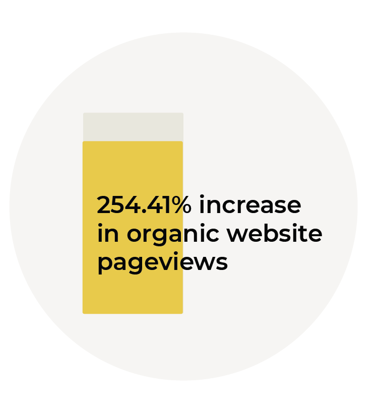 254.41% increase in organic website pageviews graphic